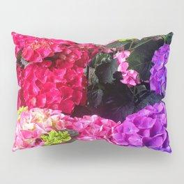 Colorful rainbow in my garden Pillow Sham