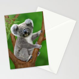 Blue-eyed Baby Koala Bear Stationery Cards