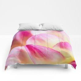 Dahlia in Pink Comforters