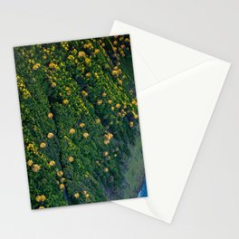 Tropical Textures Stationery Cards