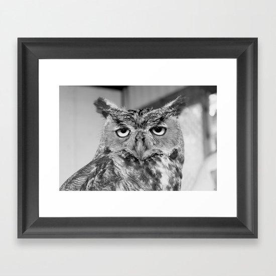 Who Who Me? Framed Art Print