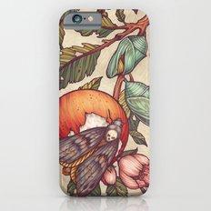 Metamorphosis iPhone 6s Slim Case