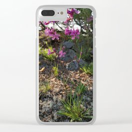 Garden designed by the nature - Viscaria vulgaris, clammy campion Clear iPhone Case