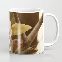 Hanami 4 Coffee Mug