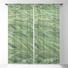 Rainy Daze Sheer Curtain