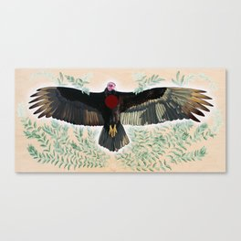 Turkey Vulture is Honoured Canvas Print