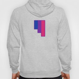 Bisexual and Biromantic Hoody