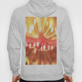 beaming no. 361 Hoody
