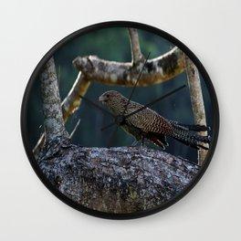 Baby Swamp Pheasant Wall Clock