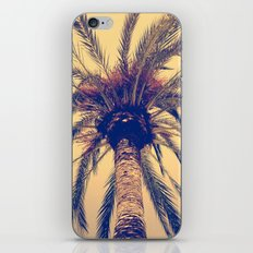 Tenerife Palm Tree iPhone & iPod Skin