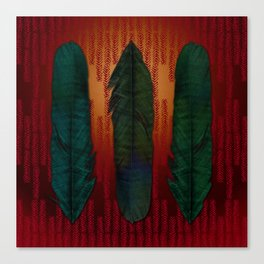 Feathers at campfire Canvas Print