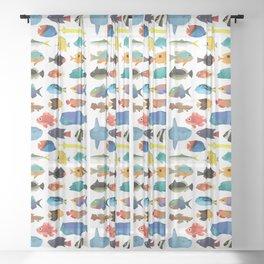 Tropical Fish chart Sheer Curtain