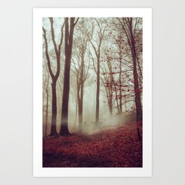 Late fall Forest in Fog Art Print