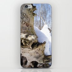 Snowy Tree iPhone & iPod Skin