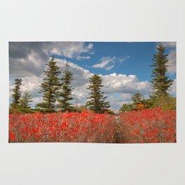 Autumn Huckleberry Wonderland Rug