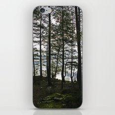 Through the Forest iPhone & iPod Skin