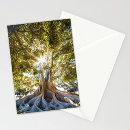 Tree Paradise (Color) Stationery Cards