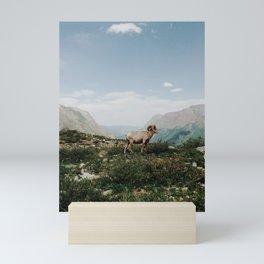 Bighorn Overlook Mini Art Print