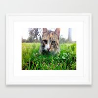 hermione Framed Art Prints featuring Hermione by Chelsea Gibson