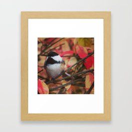 Chickadee for My Mom Framed Art Print