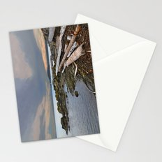 LONE SEA GULL IN THE SAN JUAN ISLANDS Stationery Cards