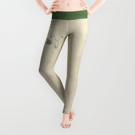 The Old Pond Leggings