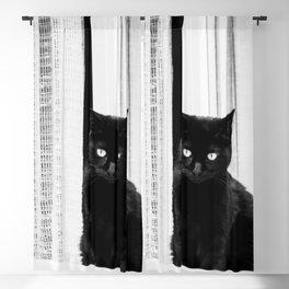 Black Cat at The Window - Black and White #decor #society6 #buyart Blackout Curtain