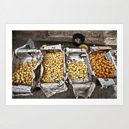Moroccan Peaches Art Print