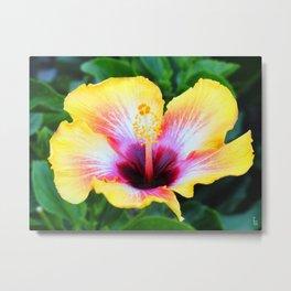 Hibiscus I Metal Print