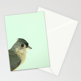 Natural History Bird Photograph - Tufted Titmouse Stationery Cards