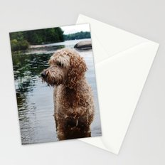 Dog in a lake Stationery Cards