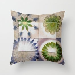 Doleritic Actuality Flower  ID:16165-074049-84781 Throw Pillow