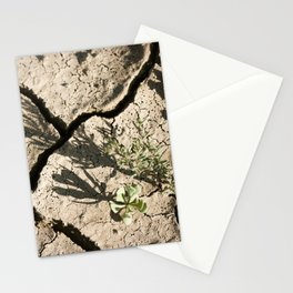 dry life Stationery Cards