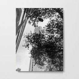 Tree Branches Skyscraper Metal Print