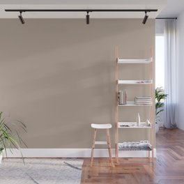 Taupe - Beige - Light Brown Solid Color Parable to Valspar Western Sandstone 1001-10A Wall Mural