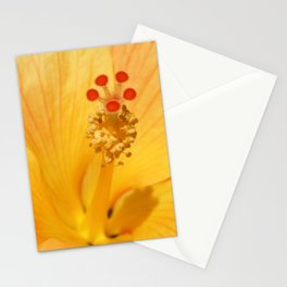 Golden Hibiscus Stationery Cards