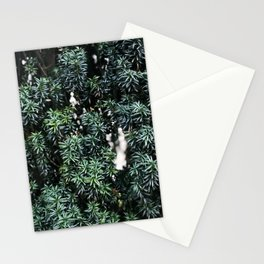Evergreen tree Stationery Cards