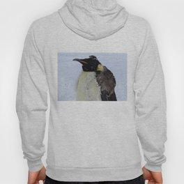 Molting Emperor Penguin Hoody