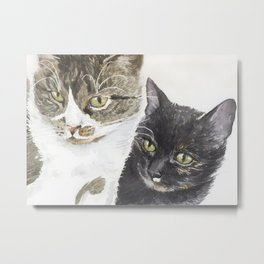 Two cats - tabby and tortie Metal Print