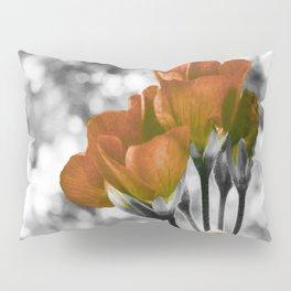 Mustard Orange Flowers Pop of Color Pillow Sham