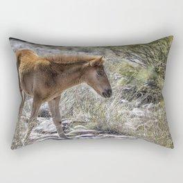 Salt River Wild Foal Rectangular Pillow