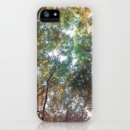 Forest 011 iPhone Case