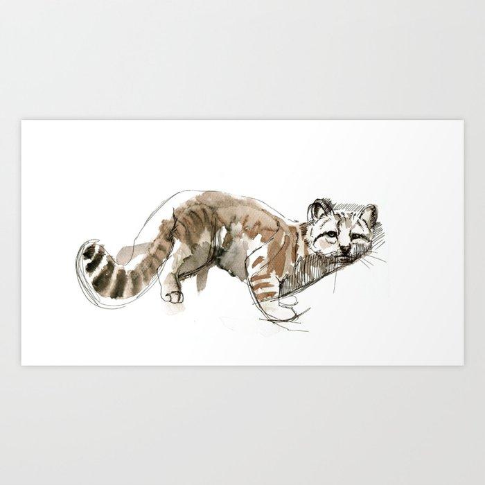 Totem Andean cat (AGA) Art Print