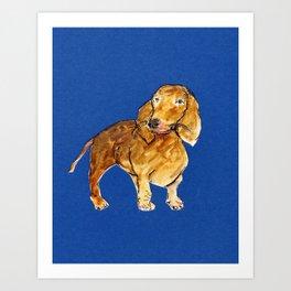 Daschund on dark blue Art Print
