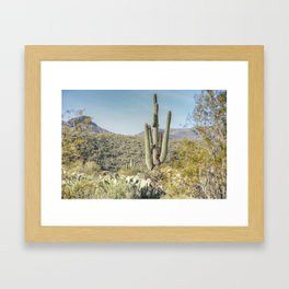 Trees and Cacti  Framed Art Print