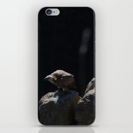 Vultures iPhone Skin