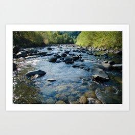 Molalla River Art Print