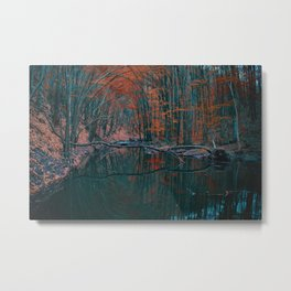 Romanian forest in autumn Metal Print