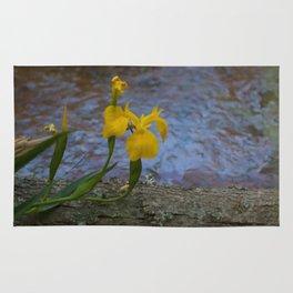 Floral Print 020 Rug