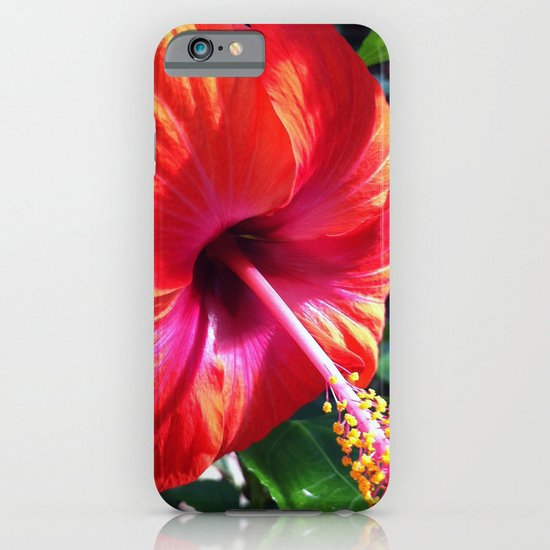 Red Beauty iPhone & iPod Case